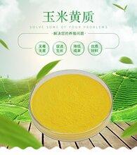 玉米黄质(144-68-3)原料,厂家直供