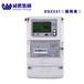 長沙威勝電能表國網表DSZ331/DTZ341多功能電能表