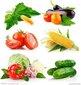 深圳松崗蔬菜配送新鮮衛生準時送貨圖片