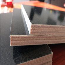 德州覆膜板_覆膜板價格_建筑模板_清水建筑模板圖片