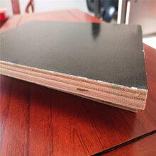 建筑模板~德州建筑模板木板廠家~廊坊建筑模板價格~建筑模板規格圖片