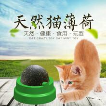 寵物零食批發市場圖片
