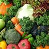 食堂食材、生鲜蔬菜、农副产品