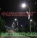 眾熠平等造型燈美化街道