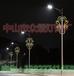 草原亮化文明造型燈眾熠zy-8