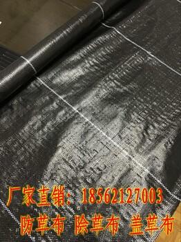 防草布除草布控制杂草显示出巨大优势。土工膜厂家土工布