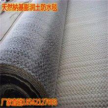 鄭州本公司供應4000g-6000g覆膜膨潤土防水毯價格最低圖片