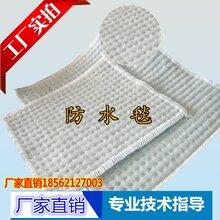 4000g膨潤土防水毛毯廠家_膨潤土防水毯圖片_膨潤土防水板圖片