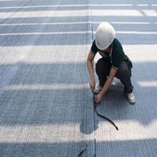 連云港膨潤土防水毯的規格有那幾種圖片