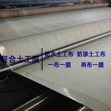 復合膜,600克佳木斯市養殖HDPE復合土工膜定制兩布一膜圖片