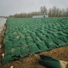 四川草籽护坡生态袋河道护岸用护坡生态袋源头厂家图片