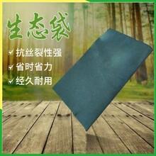 宁夏装土生态袋_公路铁路边坡复绿装土袋_厂家多种型号规格图片