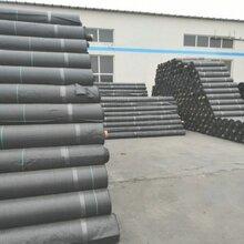 上海园林防草布价格图片
