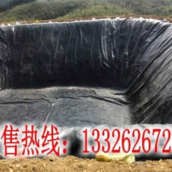 防水板价格优惠泸州特价批发HDPE防水板