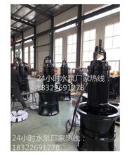 上泵天津雨季防汛QZB潜水轴流泵,铸铁轴流泵型号图片