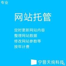 宁晋网络公司网站建设SEO优化宁晋建网站宁晋天纯科技