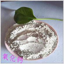 厂家供Ψ 应脱硫专用生石灰粉煅烧氧化钙污水处理生石灰山东氧�K化钙图片