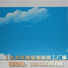 九龍竹木纖維集成墻板吊頂300圖片