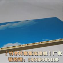 衢州竹木纤维集成墙面什么牌子好图片