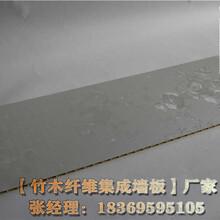 沧州集成墙板厂家装饰材料图片