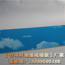 辽源竹木纤维集成墙板厂家厂家直销图片