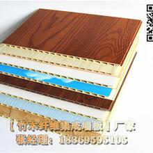 泉州竹木纤维集成墙板pu装饰图片
