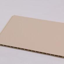鞍山塑钢墙板厂家600厂家直销图片