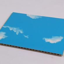 吴忠石塑集成墙板厂家300顶线安装方法图片