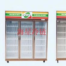 饮料展示柜、便利店冷藏柜使用的注意事项图片