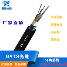 GYTS-24B1鋼鎧裝室外單模光纜12芯48芯管道防咬圖片