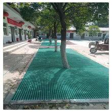 树篦子玻璃钢格栅护树板绿化防尘用树池盖板树池篦子行道树盖板