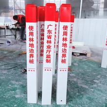 玻璃鋼電纜標志樁警示樁,道路樁,地埋公路界樁廠家圖片