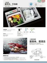 洗碗機什么品牌好用—廣東捷麗雅智能水槽洗碗機圖片
