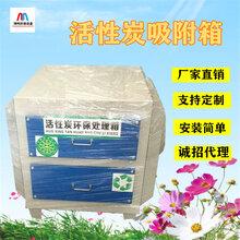 活性炭吸附箱废气处理装置翔鸣环保厂家直销