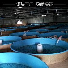 浩凯定制玻璃钢材质养鱼池/玻璃钢水槽使用寿命长图片