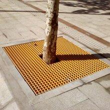 園林綠化樹篦子格柵--樹池子格柵--玻璃鋼格柵可任意裁剪圖片