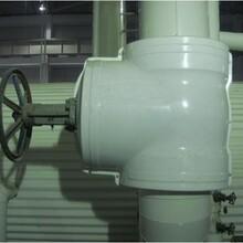 直通式保温壳-玻璃钢阀门保温套厂家冲销量图片