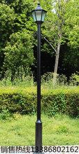 LED太阳能灯户外厂家新农村图片