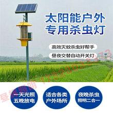 太阳能杀虫灯农村稻田池塘果园灭蚊专用