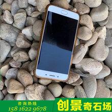 廣東鵝卵石清遠原產地鵝卵石家裝園林鵝卵石