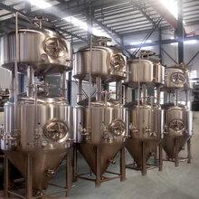 山东精酿啤酒设备厂家啤酒设备一套价格图片