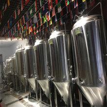 河南精酿啤酒设备厂家啤酒厂啤酒设备图片