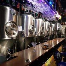 小型精酿啤酒设备厂啤酒设备生产厂家图片