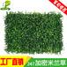 景观外墙围栏装饰塑料假草背景墙休闲场所办公室绿化仿真植物绿植墙