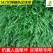 丰草足球场人造草坪运动场学校操场人工草坪双面带筋仿真绿色地毯草