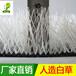 广州足球场白线草批发5公分环保PE材质运动场地门球场人造白草