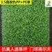 广州高尔夫球场专用人造草高密度门球绿色塑料卷丝草坪