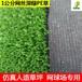 网球场人造草坪丰草厂家销售运动操场人工草体育场常用仿真草