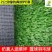 广州羽毛球网丝人工草篮球场PE材质人造草皮运动场绿色仿真草坪