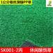广州丰草高尔夫人造草坪休闲装饰幼儿园仿真草1公分卷丝塑料草